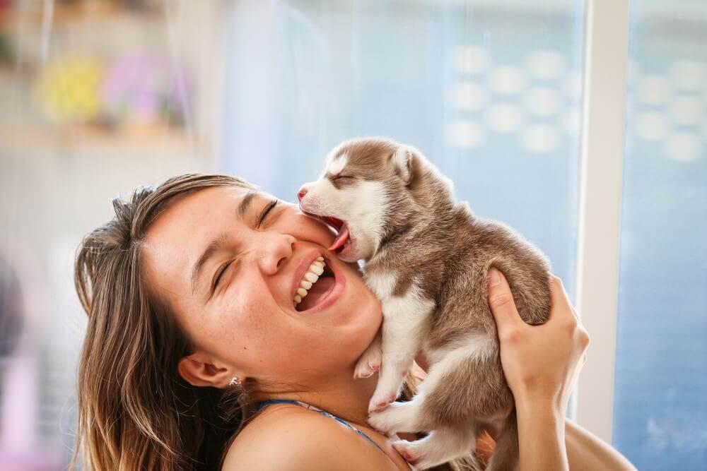 zadowolona kobieta ze szczeniakiem, etapy rozwoju szczeniąt