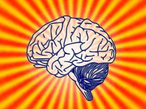 Czym jest psychobiologia i jakie są jej założenia?