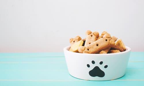 smakołyki dla psów