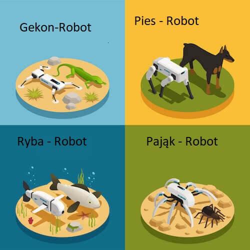Zwierzęta roboty