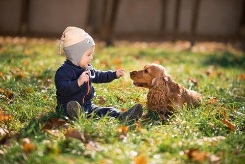 Dziecko na trawie z psem, koncepcja samo zdrowie