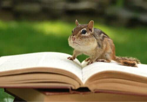 Jakie książki zoologiczne warto znać? Oto 9 przykładów