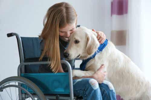 Dziewczynka na wózku przytulająca psa