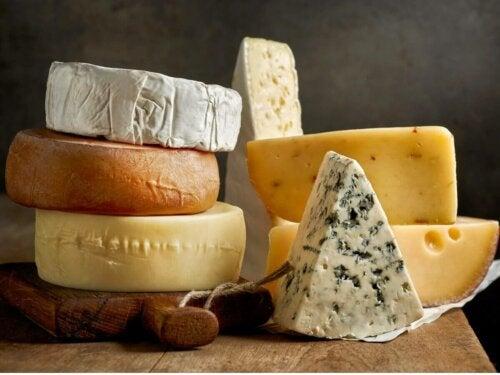 Różne rodzaje serów