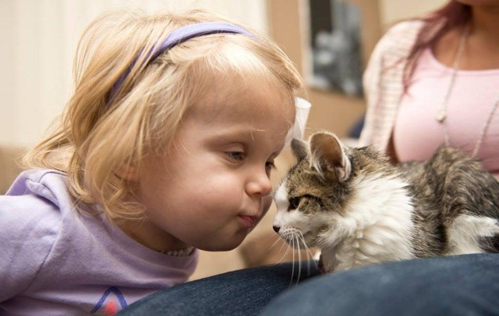 Flicka nosar på katt