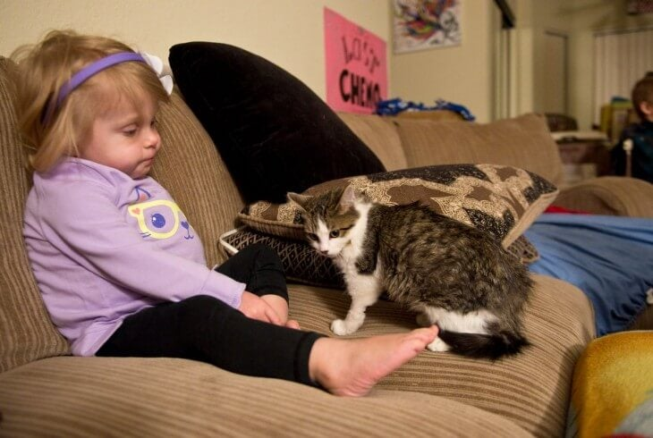 Flicka och katt i soffa