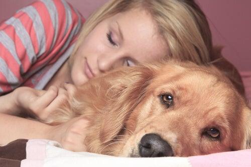För- och nackdelar med att sova med ditt husdjur