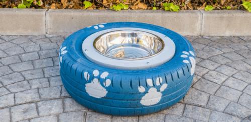 Hur du gör en hemgjord vattenskål till din hund