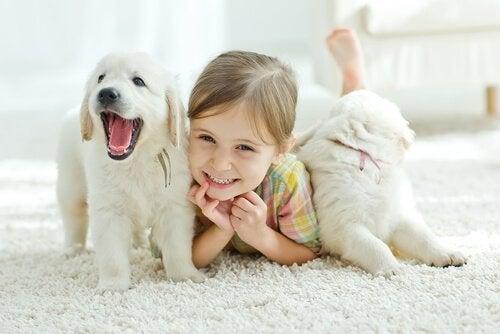 Husdjur gör bebisar lyckligare, men på vilket sätt?