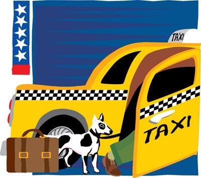 Taxi för hundar utan extra kostnad på vissa håll i världen