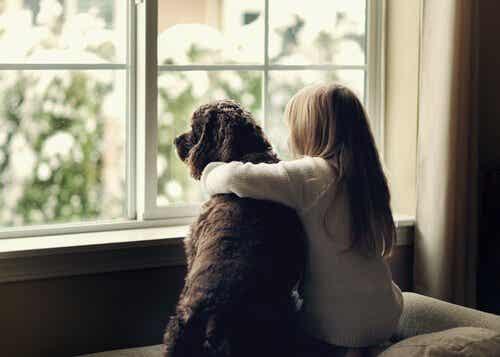 Djurassisterad terapi fungerar, men vilka djur används?