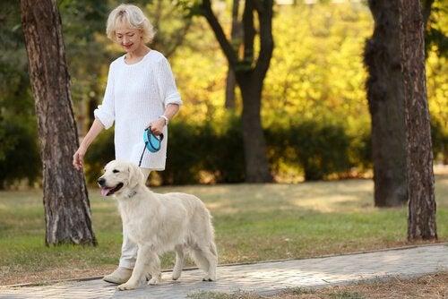 Kvinna promenerar med hund