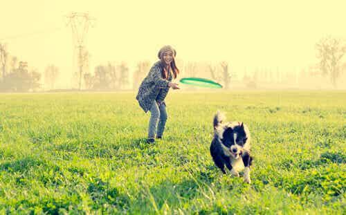 9 roliga aktiviteter för din hund då ni är utomhus