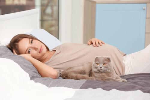 Gravid kvinna i sängen med katt.