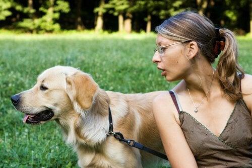 Vad gör du om hunden inte lyssnar på dig?