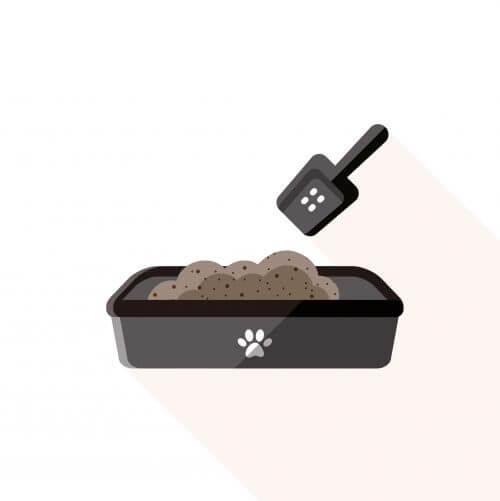 Låda med sand för hundar.