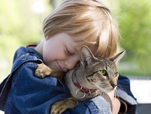 5 viktiga saker barn kan lära sig av katter