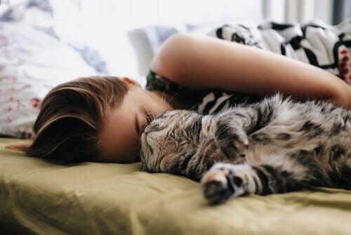 Att sova bredvid din katt