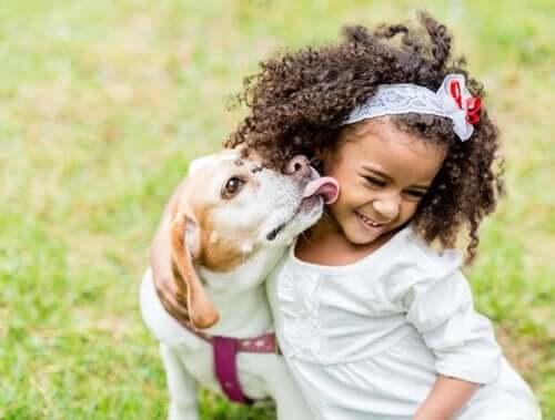 Hur bör barn interagera med hundar på ett bra sätt?