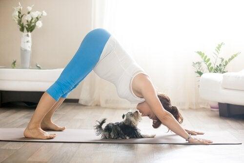 Kvinna med hund utför yoga