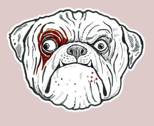 Rolig ritning av bulldogg.