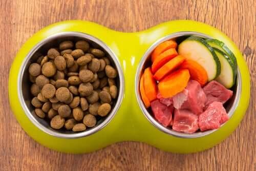 Hundmat och ingredienser