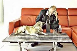 Ledsen hund och man på soffa
