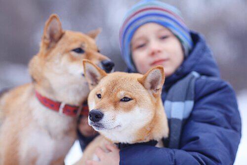 Ett barn som kramar om sina hundar.
