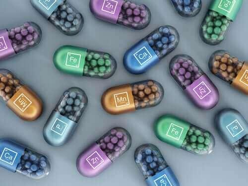 Syntetiska vitaminer och mineraler i hundmat