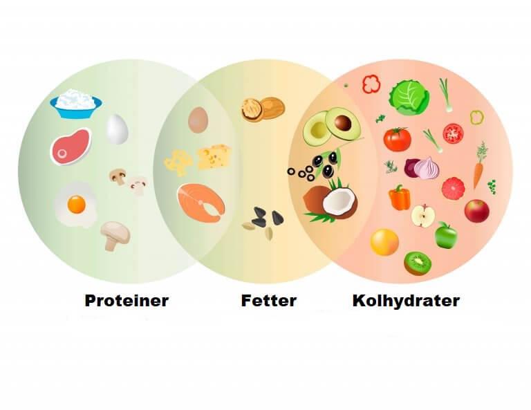 Protein, fett och kolhydrater