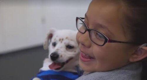Walter – en hund som förstår teckenspråk
