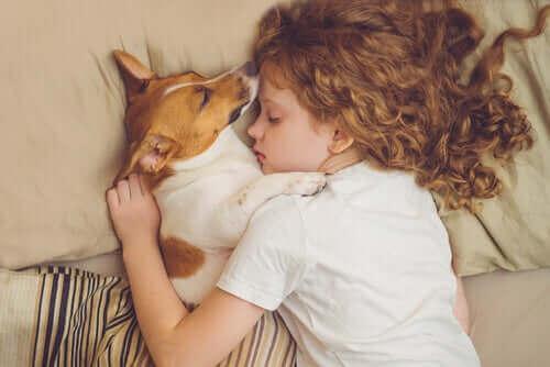 Hund delar säng med barn.