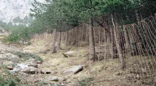Vertikala nät för att fånga vilda djur