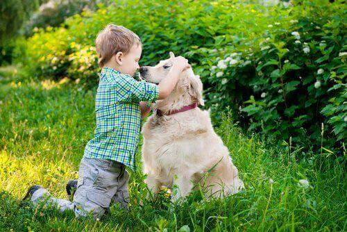 Dina barn behöver förstå din hunds kroppsspråk