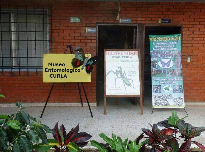 CURLA är ett etnomologiskt museum i Honduras.