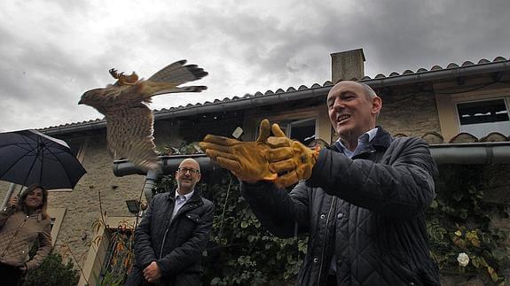 En fågel släpps fri efter framgångsrik behandling.