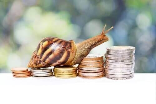 Mynt med djurmotiv