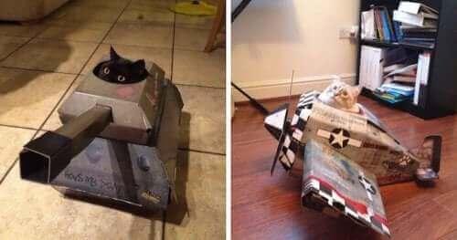Stridsvagnar och flygplan: Kartongleksaker för katter