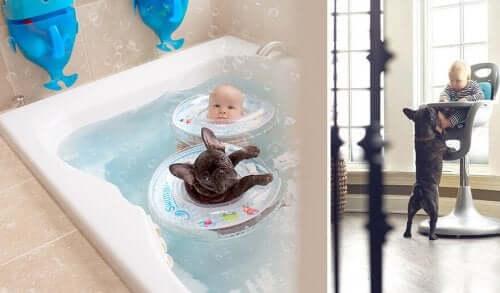 Dylan och hans hund i badkaret i flytringar.