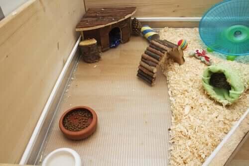 En hamsterbur med leksaker.