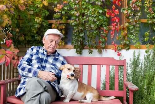 En äldre man sitter på en bänk med sin hund.
