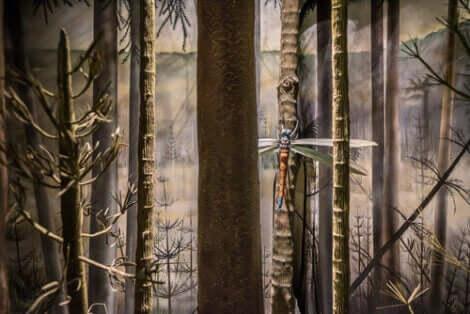 Gigantiska insekter: En trollslända i skogen.