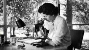 Rachel Carson tittar i mikroskåp