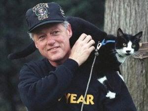 den internationella kattdagen: Clinton med katten Socks