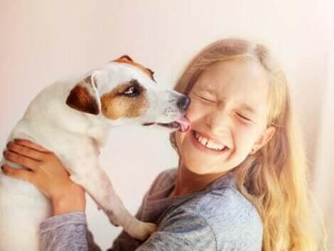 Ett medvetslöst djur: En hund slickar ett barn i ansiktet.