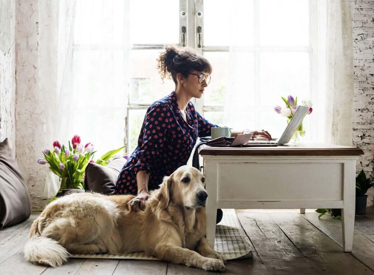 En hund sitter bredvid sin ägare när hon jobbar.