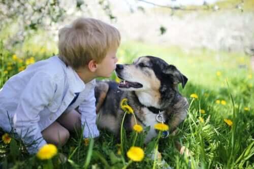 En pojke leker med sin hund utomhus.