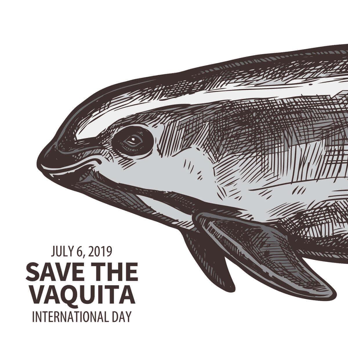 Internationella dagen för att rädda kaliforniatumlaren