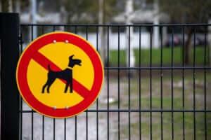 Skylt som förbjuder hundar