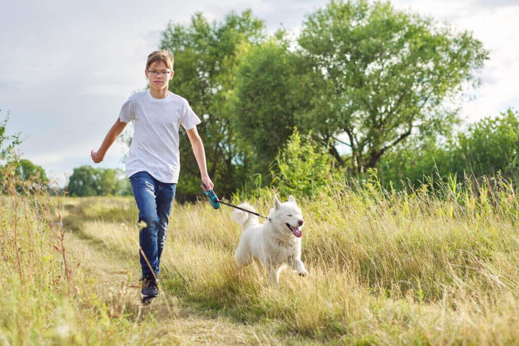 Dagliga hundpromenader blir snart lag i Tyskland